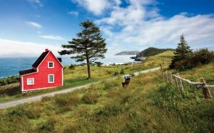 Newfoundland-tourism