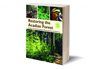 Restoring the Acadian Forest