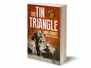 The Tin Triangle
