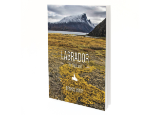 review-labrador-big-land-cover