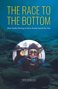 Cover image for The Race to the Bottom