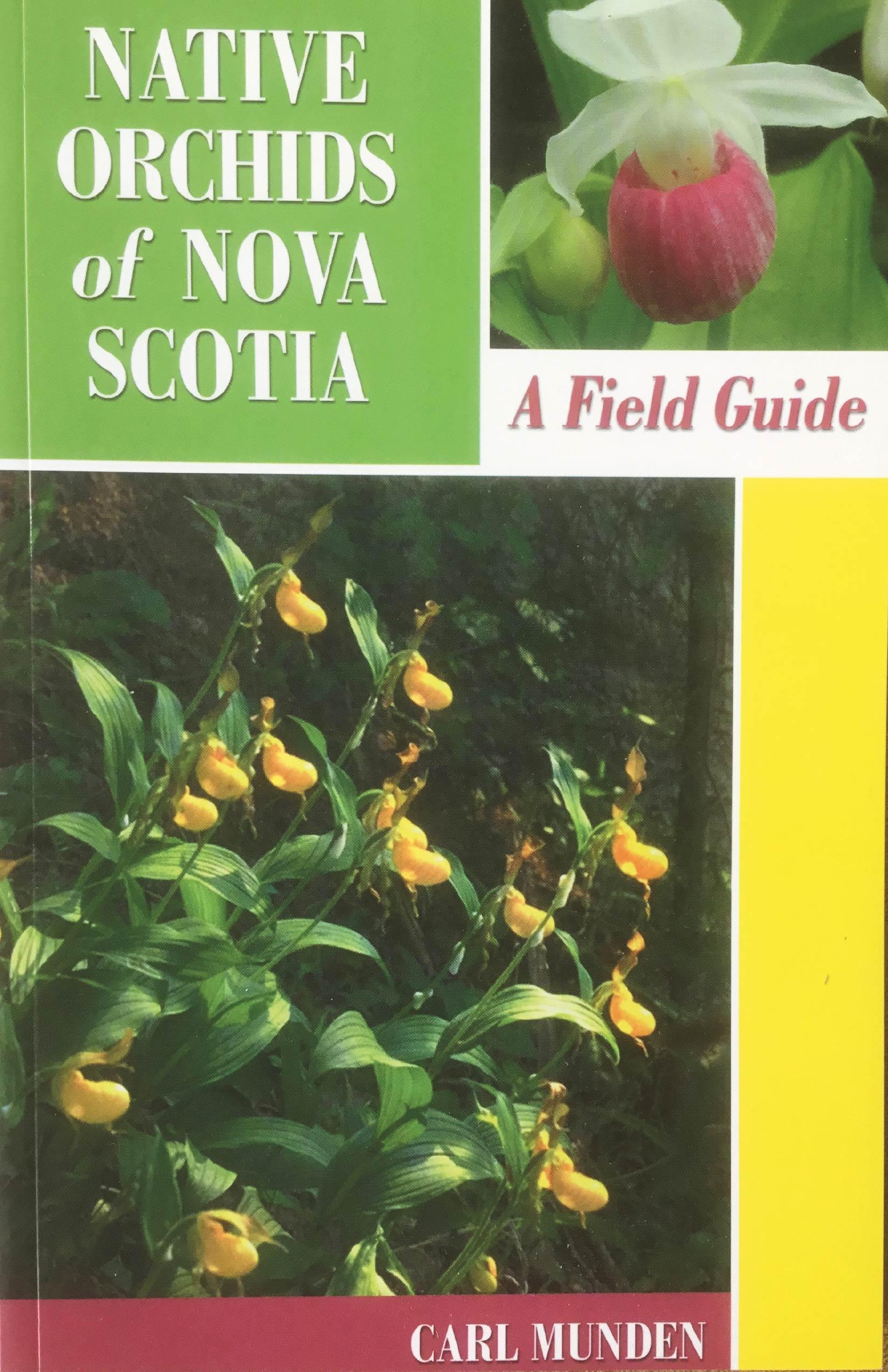Staff Picks: 3 Guides to Nature's Bounty