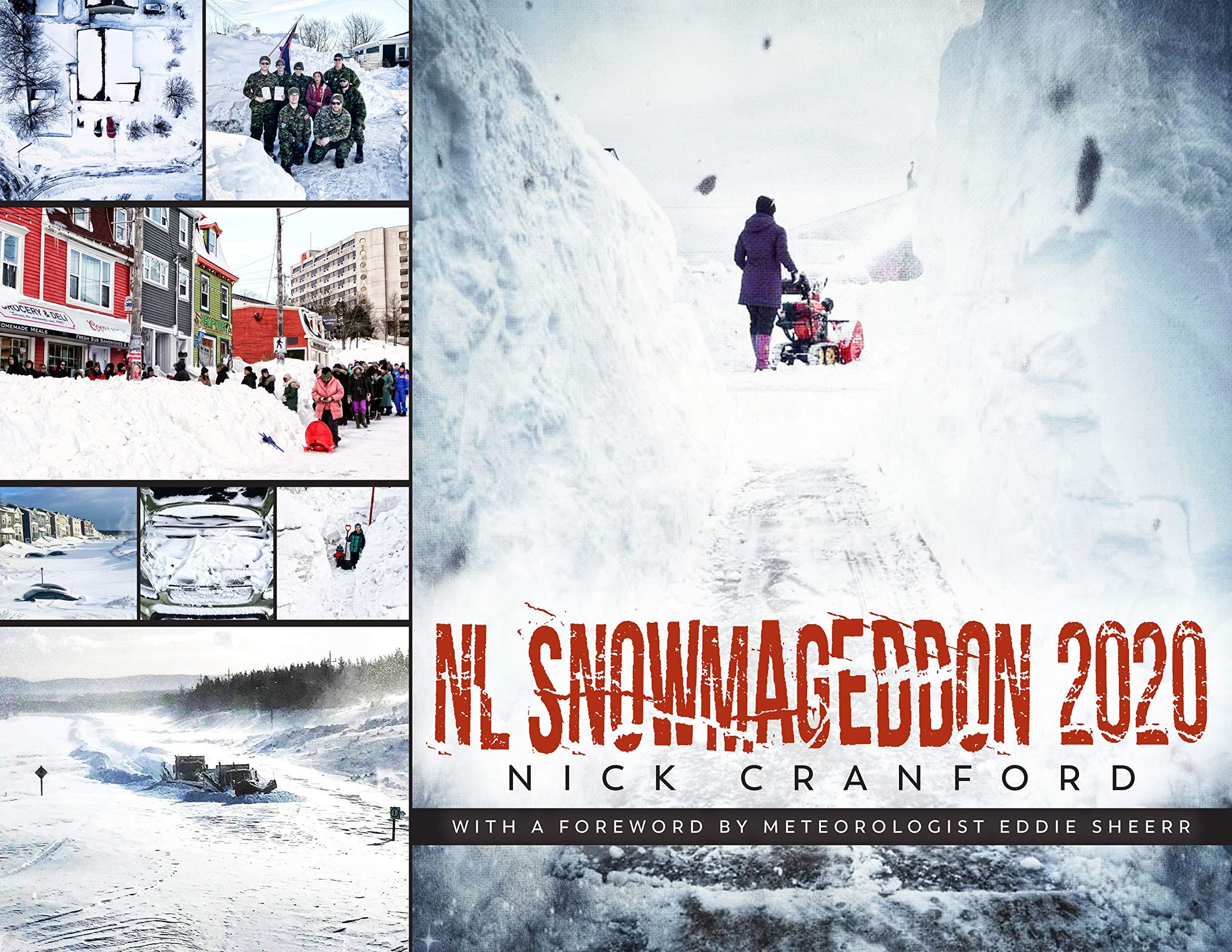NL Snowmageddon 2020