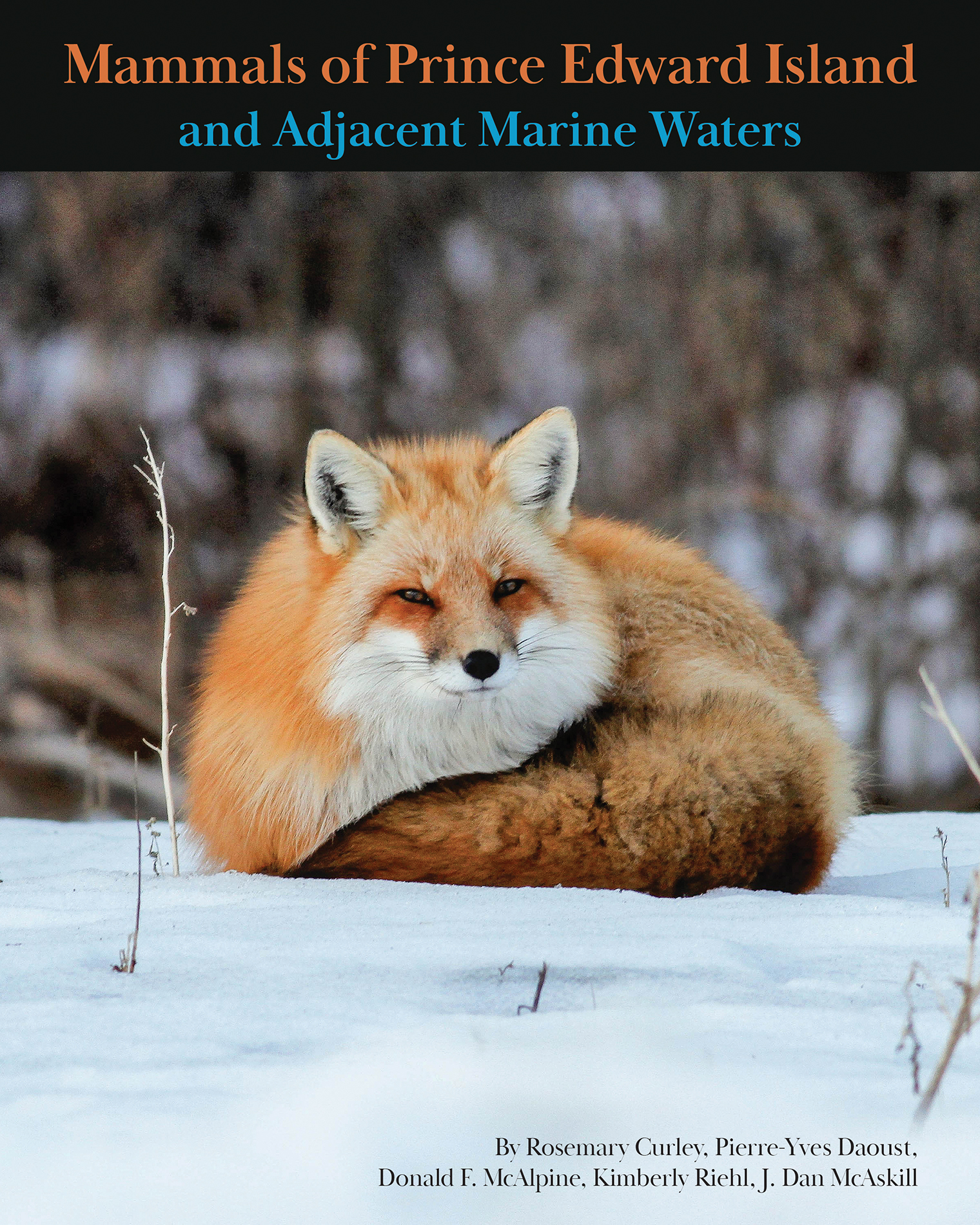 Mammals of Prince Edward Island and Adjacent Marine Waters